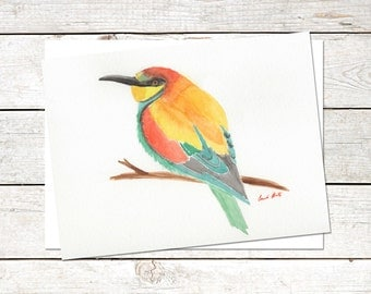 Bird Note Cards, 6 x 4.5, Original Art, Watercolor Painting, Bee-Eater Cards, Blank Note Cards, Nature Cards, Wildlife Note Cards