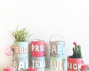 Hand Painted Paint Planters