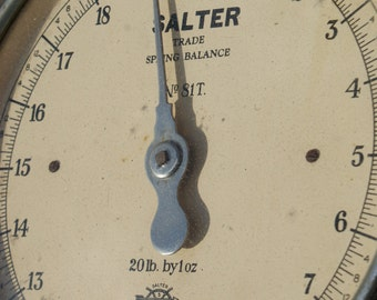 Salter No.81T spring balance hanging trade scales/butchers scales