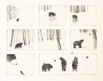 Bear Storyboard