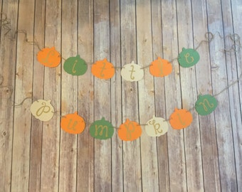 Little Pumpkin banner - Fall baby