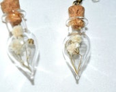 White Baby's Breath Real Dried Magical Flower Glass Tear Drop Vile Earrings