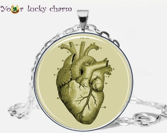 Anatomical Heart Pendant, Anatomical Heart necklace, Aanatomical Heart Jewelry, 1 inch, art pendant, gift for Her Him