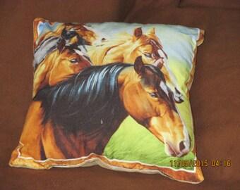 Horse Pillows - small