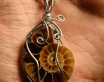 Wire Wrapped Ammonite Fossil Necklace