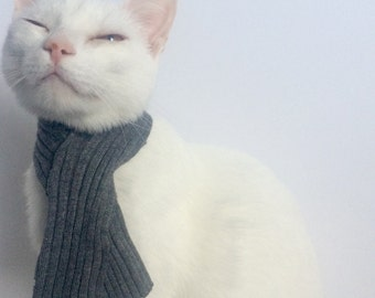 Cat Scarf| Cat Scarves, Cat Collar, Scarf for Cat