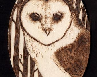 Woodbruned Barn Owl