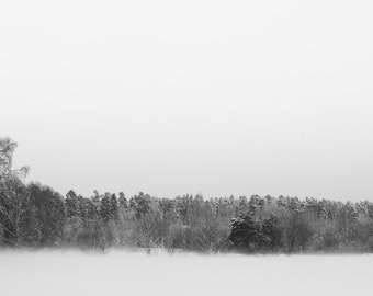 fine art photograph, art print, art, black and white, photography, fog, mist, Finland, trees, field, mood, forest, rye field, winter, snow