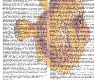 Dictionary Art Upcycle Nautical Orange Fish