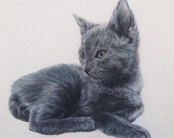 Custom pet portrait - original coloured pencil drawing single pet