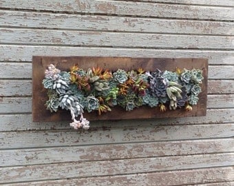 "Vertical Garden 10""x30"" Living Wall Planter Vertical Hanging Garden Art Rustic Wood Arrangement Flower Bouquet Gift Wedding"