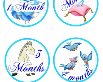 Disney Princess- Cinderella Only Monthly Baby Belly Stickers