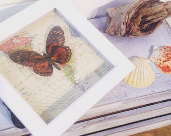 """3D Butterfly on Map framed picture - Map Art- 6x6"""""""