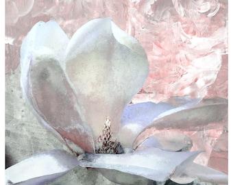 Magnolia 'Grace', magnolia print, pastel colors, limited edition print, flower art, iskra fine art, botanical print, floral art,pastel color