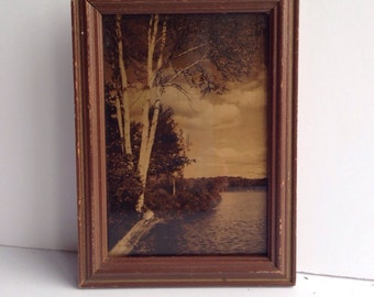 Orotone photographic print of lake with trees