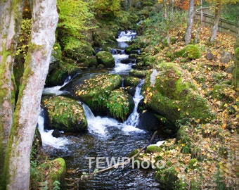 Waterfall in the Black Forest of Germany.