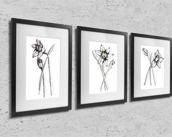 Daffodils, set of 3 prints, modern scandinavian minimalist home decor