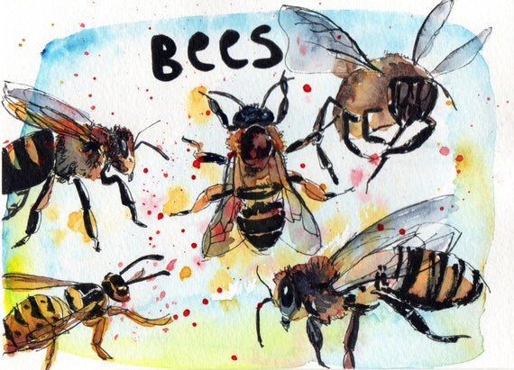 Bees - Pen and Watercolour Painting
