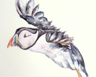 Puffin wall stickers, puffins, puffin art, bird wall decal, wildlife decals, British birds, bathroom decor, puffin decals