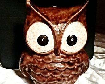 Ceramic Owl Statue- Brown
