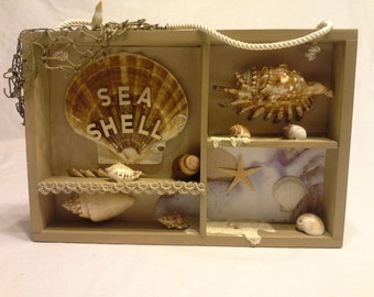Sea shell Shadow Box,  Hanging shadow  box, Nautical shadow box