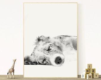 Sleeping Dog Print, Nursery Printable, Animal Wall Art, Pet Photography, Cute Children Poster, Kids Bedroom, Black & White Art, Digital File