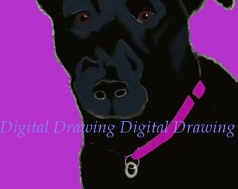 "Black lab drawing 5""*7"""