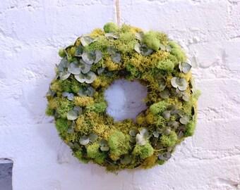 "Preserved Moss Wreath 9"""
