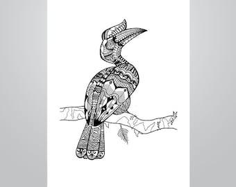 Hornbill bird Etsy