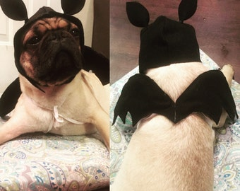Dog Bat Halloween Costume