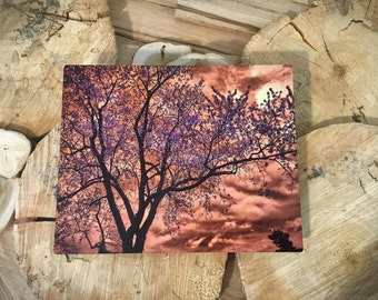 Surreal Tree and Sky Metal Print 8X10