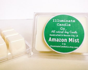 Amazon Mist Soy wax melt|Wax Tarts| Handmade| Soy Wax| Gifts for her| scented