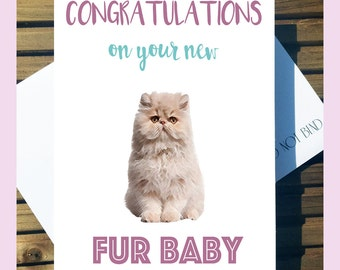 New Pet Cat Fur Baby Greetings Card - Congratulations!