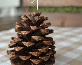 Winter Woods Pine Cone Place-card Holders (Set of 8)
