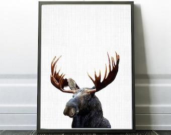 Moose Wall Poster, Woodland Animal, Moose Photography, Photography Print, Instant Moose Art, Moose Decor Wall Art, Nursery Moose Artwork