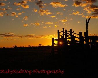 Cattleyard Sunset