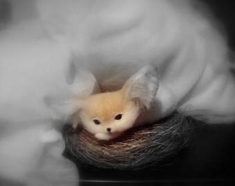 Needle felted Fox Fenech  - Miniature sculpture Handmade Felt toy -  Fox Fenech  as a gift-realistic Fox Fenech.