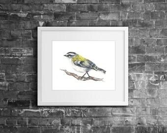 """8x10"""" 'Firecrest' Woodland Bird Watercolour Fine Art Giclée Nature Print"""