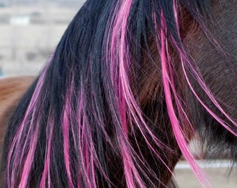 Horse Extensions