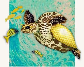 Card - Hawksbill Sea Turtle - 14cm x 14cm - blank