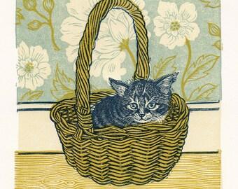 Helen (Kitten in a Basket)