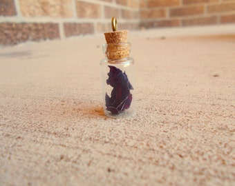 Dried rose vial necklace