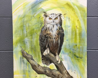 Owl on branch 50cm x 40cm