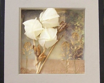 Encaustic art, wax art, beeswax collage nature study 2, encased in deep frame, mixed media art, dimensional art