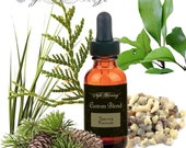 Sacred Forest Oil Custom Blend for December