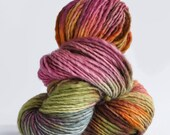 SALE ~ MANOS del Uruguay space dyed yarn in color #113 wildflowers