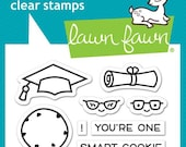Lawn Fawn Clear Photopolymer Rubber Stamp set - smart cookie
