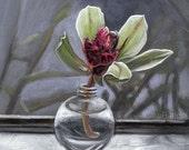 Original Painting by Cate Rangel - Green Cymbidium Orchid 5x7
