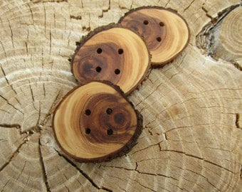 3 super cute wooden buttons- Sunburst Juniper, handmade buttons (2043)