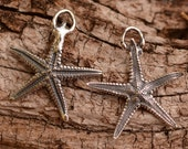 ONE Starfish Charm in Sterling Silver, Real Starfish perfect for earrings, AD455